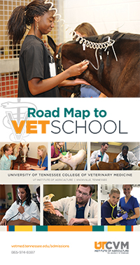 Veterinary guide for high school students