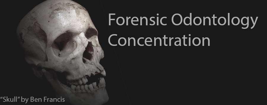 Skull used for Forensic Study
