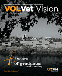 VolVet Vision cover