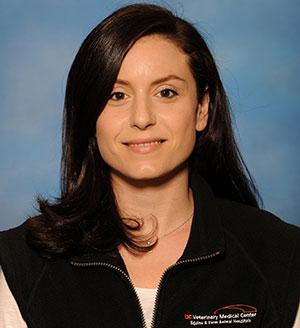 Chiara Hampton Profile Page