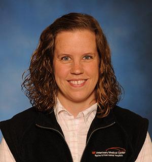 Karen McCormick Profile Page