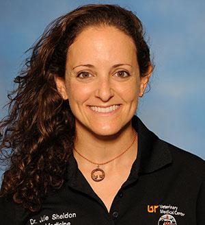 Julie Sheldon Profile Page