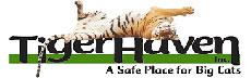 Tiger Haven Logo