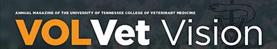 VolVet Vision logo